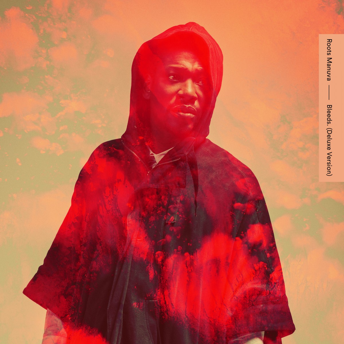 Roots Manuva - Deluxe Version design for Bleeds